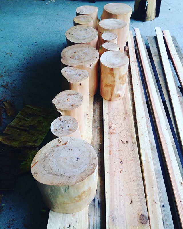 KUKUトーチチェア、トーチ、薪割り台などにいかがでしょうか!サイズによって使い道いろいろ今日の材はツガ目もしっかり詰まった硬めの天然木薪割り台などに使用したい方は早めにご連絡下さい。トーチをオーダーの方はもうしばらくお待ち下さいね!#woodboardkuku#wood#タンコロ#木工#チェア#トーチ#木こりのろうそく#薪割り#薪割り台#bbq #キャンプ#天然木#ツガ #インディアンイーグルヤス#イルファーロ