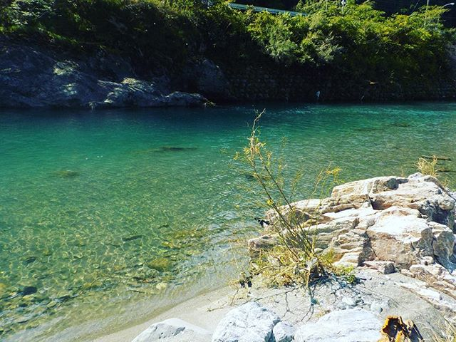 今日は神山町にお邪魔しました!神山町地域おこし協力隊とのコラボ企画、kukuサップ体験会を開催します!日程調整中です。近日開催!こんなきれいな水は徳島でもなかなかないです(^^) #那賀町#神山町#地域おこし協力隊#町を超えて#思いをつなぐ#林業#森林保全#co2固定#里山を守る #サップ#ウッドボードkuku @nakawood