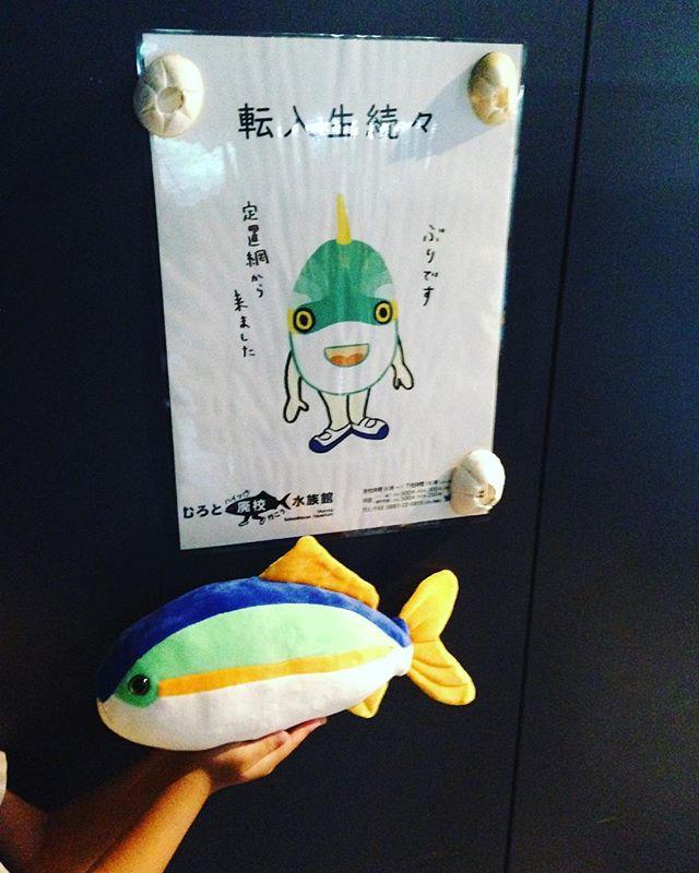 室戸廃校水族館に行ってきました~