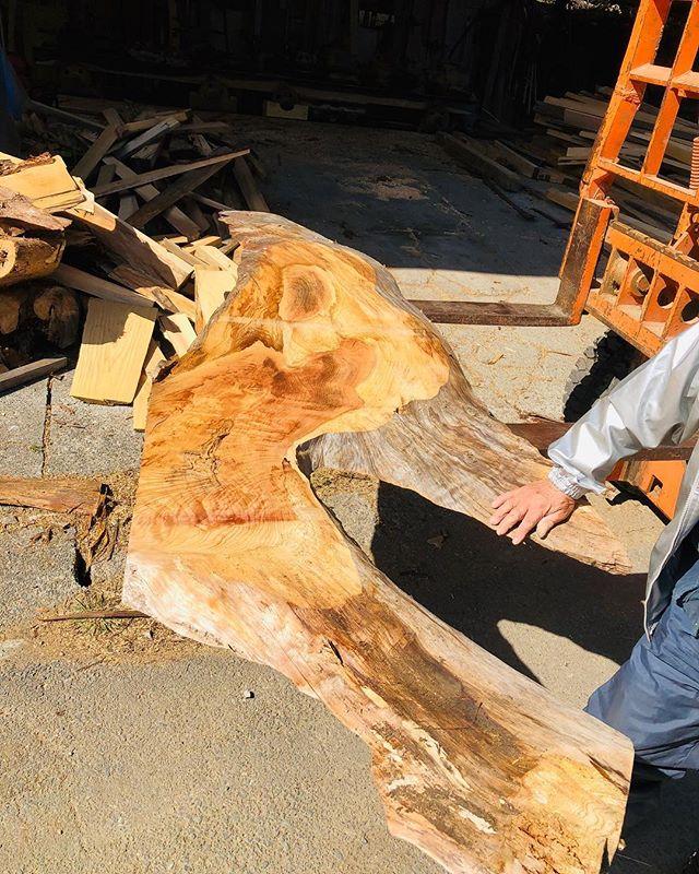 個性的な大径木材をある事に使います(^^)
