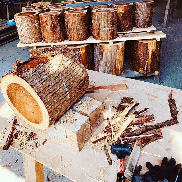 KUKUトーチ木頭杉のトーチ&スツール。皮を剥ぐ。十字に、カット。縦穴横穴を開けて乾燥。スツールとしても使用頂けるのでサンディングでカット面を整えて仕上げていきます。皮がなかなか取れん〜。けど、良い時期に伐木した証拠や!#ウッドボードkuku #kukuトーチ#スエーデントーチ #ロケットストーブ#切り株#木頭杉#キャンプ#アウトドア#bbq #ランプ@nakawood