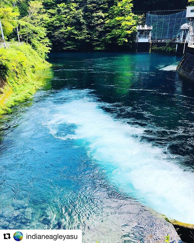 #Repost @indianeagleyasu with @get_repost・・・明日のイベントはここの湖。サップ会場はこれより上流の淵。透明度が高く、神秘的な場所です。#woodboardkuku #木頭杉#sup #woodpaddle#サップ体験#田植え体験 #木沢#定員#満員御礼@indianeagleyasu @nakawood @mebina @hidefoto.jp @perfuquick @moonjelly_official
