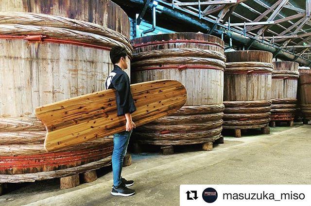 #Repost @masuzuka_miso with @get_repost・・・木桶再生プロジェクト-Wood Board- 100年以上使用した木桶材を活用したサーフボード(アライア)がついに蔵に帰ってきました!長年過ごした蔵に姿を変えて#woodboardkuku #桝塚味噌 #手前みそのススメ #アライア #サーフボード #woodboard@nakawood @indianeagleyasu