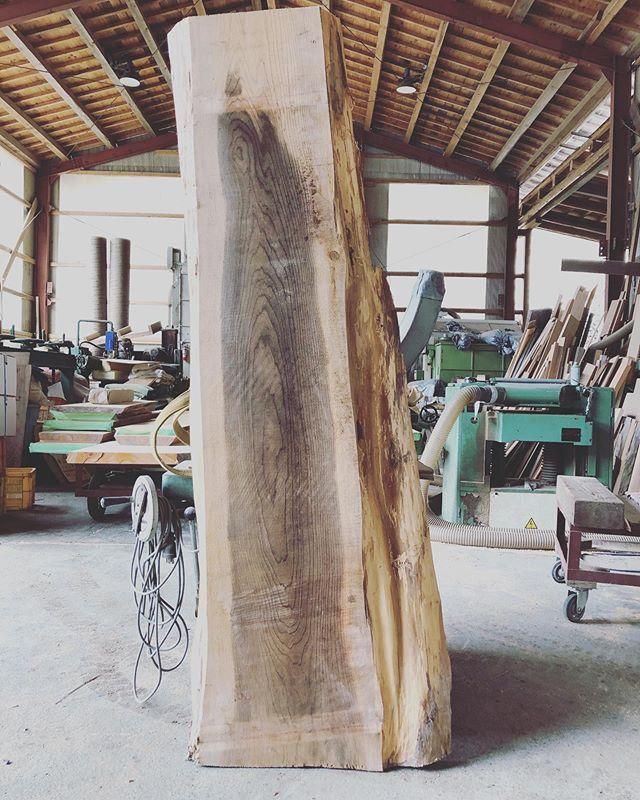 いよいよ大作にチャレンジ!希少な木頭杉の銘木をウッドアート^_^