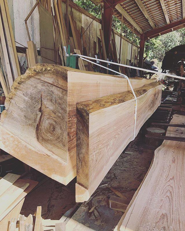 """木頭杉の製材をお手伝いさせていただきました。KUKUのボードたちもここからスタート。この作業が一番大事なパート。泉林産の""""お父さん""""でしか出来ない工程。山、木の事を知り尽くした方。多くの事を学ばせてもらってます。100年近くも山を守ってきた大樹。大事に使わせて頂きます。#woodboardkuku#woodenart #woodart #woodsurfing #woodwork #木頭杉#alaiasurfboards #woodsup #woodpaddle #woodtray @nakawood @woodboardkuku"""