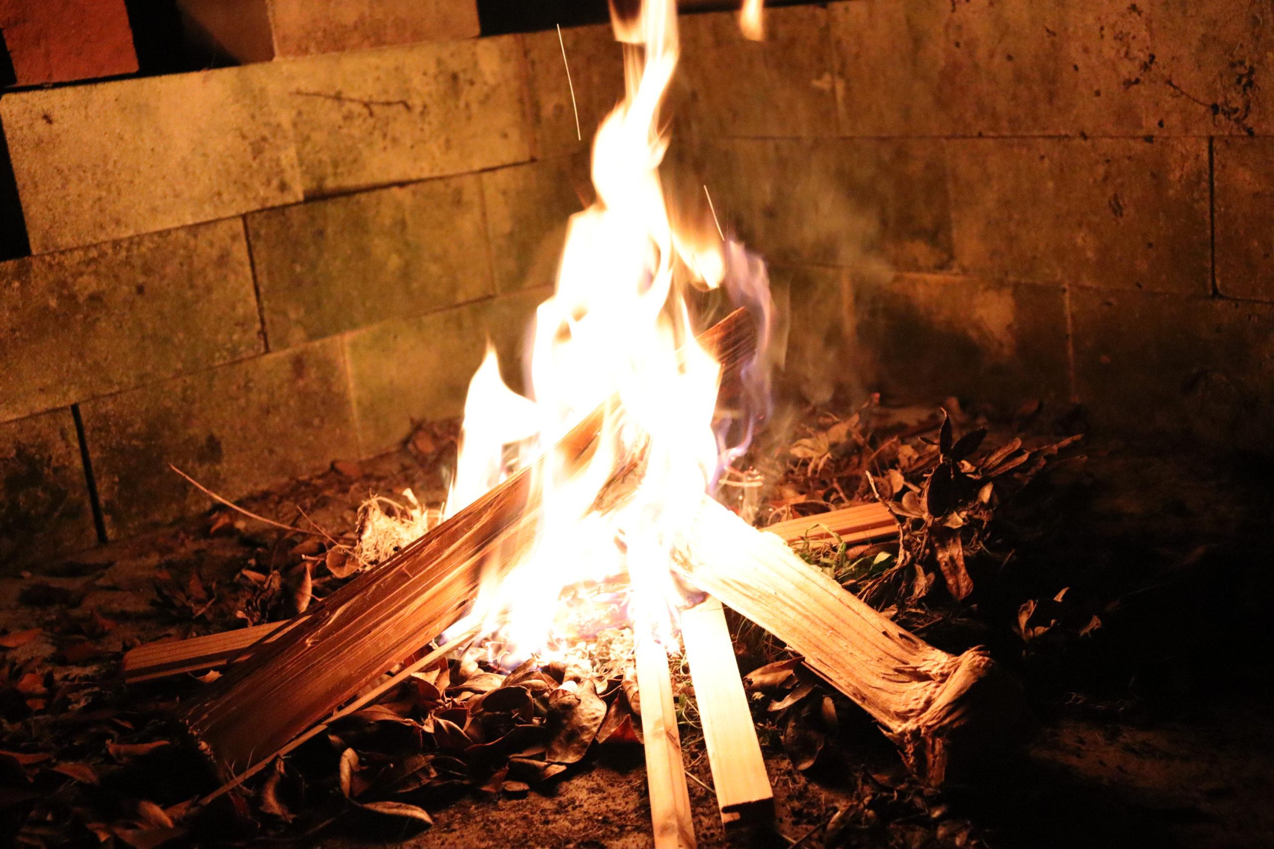 木頭杉の薪でキャンプファイヤー
